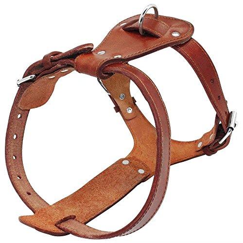 Beirui Genuine Leather Dog Harness - No Escape Pet Training Walking Harness for Large Dogs Pitbull Boxer Mastiff - Large Chest for 24-29.5