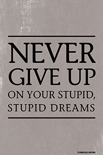 Never Give Up On Your Stupid, Stupid Dreams Demotivational Poster Print