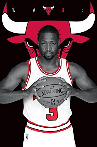 Team Bulls Poster Chicago - Trends International Chicago Bulls Dwayne Wade Wall Poster 22.375