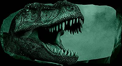Startonight 3D Mural Wall Art Photo Decor Jurassic Dinosaur World II Amazing Dual View Surprise Large 32.28 inch By 59.06 inch Wall Mural Wallpaper for Bedroom Kids Collection Wall Art