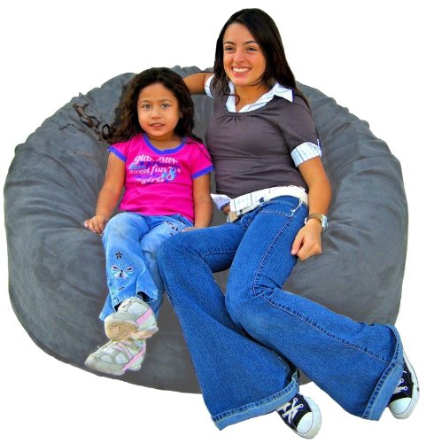 Cozy Sack 4-Feet Bean Bag Chair, Large, Grey by Cozy Sack