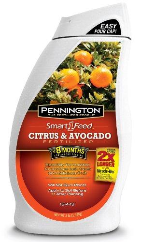 pennington-smart1-feed-citrus-and-avocado-fertilizer-13-4-13-3-pound