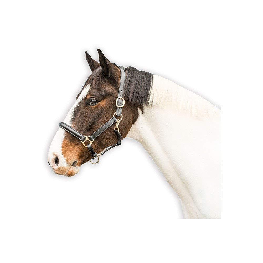 Lovesonレザーホルター B0743FF22L Horse|ブラック ブラック Horse