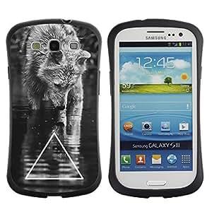 Hybrid Anti-Shock Bumper Case for Samsung Galaxy S3 / Cool B&W Wolf Triangle