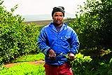 Felco Pruning Shears (F 5) - High Performance Swiss Made One-Hand Garden Pruners