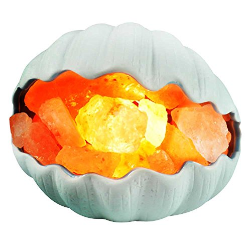 Himalayan Glow Natural Salt Lamp with Dimmer Hand Carved Cer