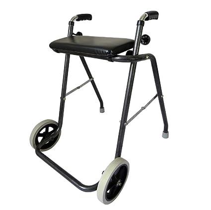 Amazon.com: LshkyZXQ - Carro de paseo de dos ruedas, de ...