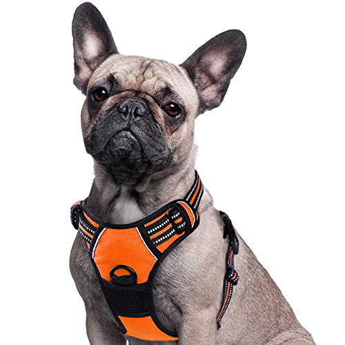 - Eagloo Dog Harness No Pull, Walking Pet Harness with 2 Metal Rings & Handle Adjustable Reflective Breathable Oxford Soft Padded Easy Control Front Clip Vest Harness Outdoor for Small Dogs Orange