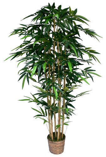 Laura Ashley 6 Foot Tall High End Realistic Silk Bamboo Tree with Wicker Basket Planter