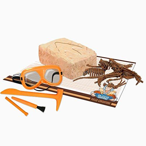 Paleo Expedition - Dino Excavation Kit - ()