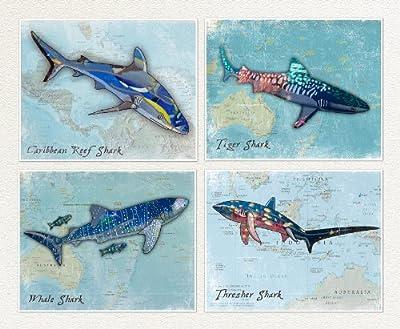 Shark Art Prints for Kids