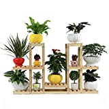 Flower Stand TYCGY Creativity Minimalist Modern Multi-layer Wooden Multi-Pot Potted Plants Wood Preservative Wood Potholder