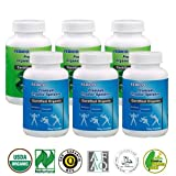 FEBICO Organic Spirulina & Chlorella Raw Powder. Set of 6