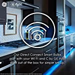 C by GE Full Color Direct Connect LED Strip Lights Extension, Requires C by GE LED Strip (sold separately), 40-inch… 9