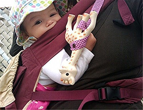 Celebrity Car Seats And Strollers - 3