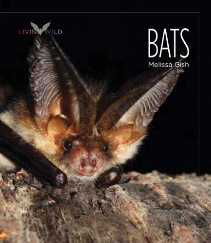 Download Living Wild: Bats PDF