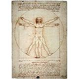 Vitruvian Man Leonardo Da Vinci Art Print, 15 x 20 inches