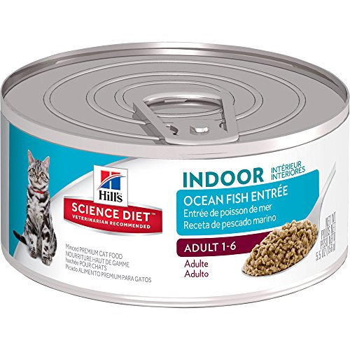 Hill'S Science Diet Adult Indoor Cat Food, Ocean Fish Entre Minced Cat Food, 5.5 Oz, 24 Pack