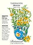 Mexican Tarragon Seeds - 250 mg - Tagetes lucida