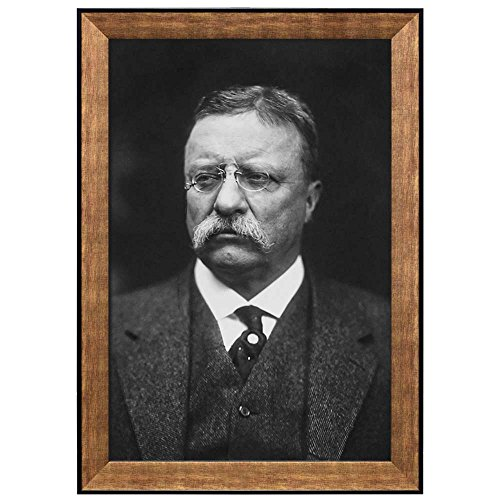 Portrait of Theodore Roosevelt (26th President of the United States) American Presidents Series Framed Art Print