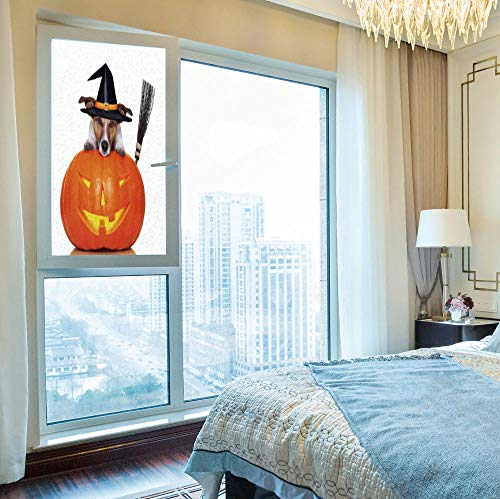 YOLIYANA No Glue Window Film,Halloween,for Window Moving Glass Door,Witch Dog with a Broomstick on Large Pumpkin,24''x48'' ()