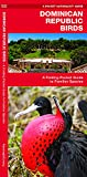 Dominican Republic Birds: A Folding Pocket Guide to Familiar Species (Pocket Naturalist Guides)