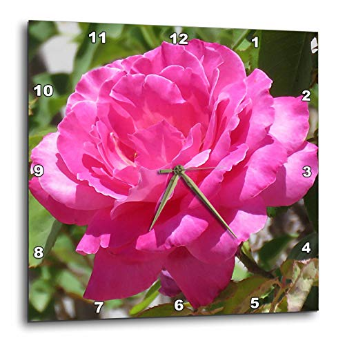 (3dRose Jos Fauxtographee- Pink Rose - A Close up of a Pink Rose with Delicate Petals - 15x15 Wall Clock (DPP_294487_3))