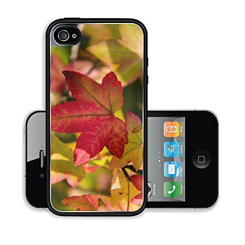 iPhone 4 4S Case Colors of autumn Image 15264168845