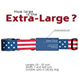 American Flag Dog Collar in 5 Different Sizes Classic (X-Large)