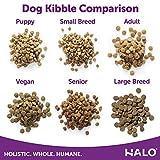 Halo Natural Dry Dog Food, Chicken & Chicken
