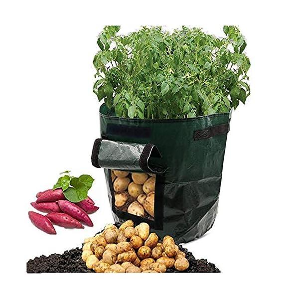 shilihuajian Sacchetto del Contenitore di Coltivazione di Patate Fioriera Fai-da-Te PE Panno Piantare Orto Addensare… 1 spesavip
