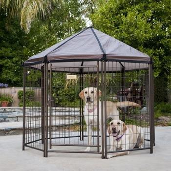 Advantek Pet Gazebo Modular Outdoor Dog Kennel, 5' L X 5' W X 5' H
