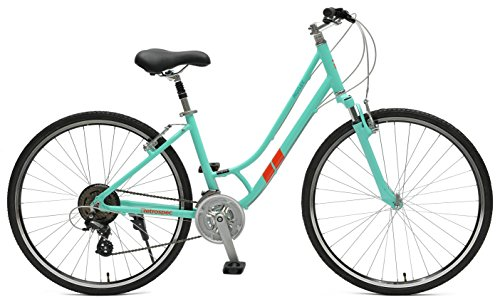 Retrospec Bicycles Motley Hybrid Bike 21 Speed, Viridian, 14