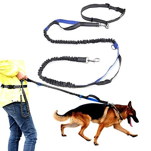 Hands Free Waist Dog Leash with Dual Bungees, Handle Leash with Adjustable Waist Belt for Running, Jogging or Walking