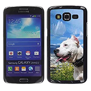 Design for Girls Plastic Cover Case FOR Samsung Galaxy Grand 2 Sunny Dog Sea Ocean Pit-Bull Terrier Pet OBBA
