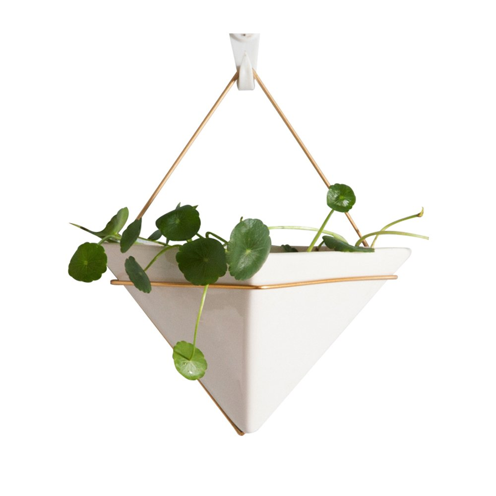Hanging Planter For Indoor Plants, Geometric Wall Decor Container - Great  For Succulent Plants,