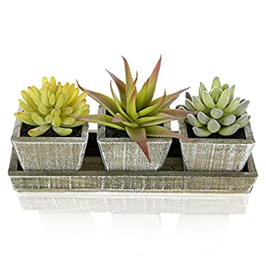 Set of 3 Life-Like Mixed Artificial Succulent Plants in Country Rustic Wooden Square Pots & Display Tray