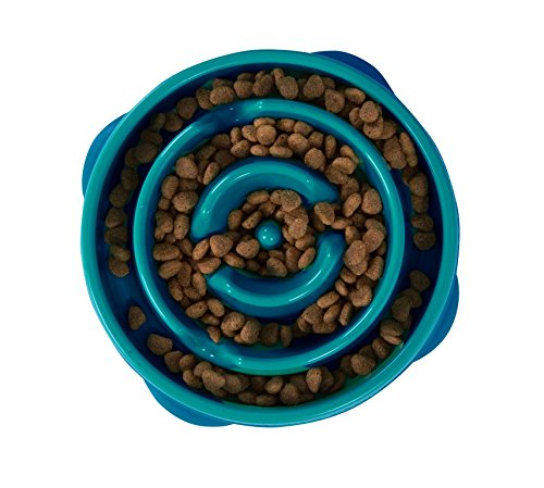 Food Bowl Feeder - Outward Hound Fun Feeder Dog Bowl Slow Feeder Stop Bloat for Dogs, Small, Teal