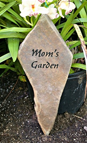 Engraved Garden Rock (Doolittle Gardens)