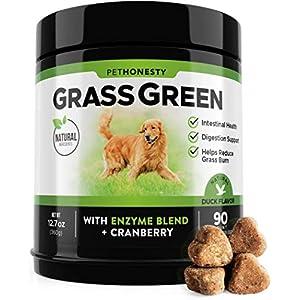 PetHonesty GrassGreen Grass Burn Spot Chews for Dogs - Dog Pee Lawn Spot Saver Treatment Caused by Dog Urine - Cranberry, Apple Cider Vinegar, DL-Methionine Grass Treatment Rocks - 90 Chew Treats 17