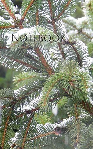 Notebook: Winter spruce pine cone nature ()