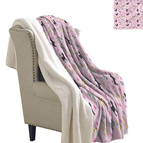 Acelik Lamb Velvet Blanket Kitty Colorful Different Cats Machine Washable and Drier Safe W59 x L78