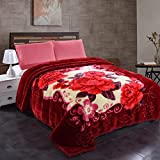 Jml Korean Style Mink Velvet Fleece Blanket, 10 Pounds Heavy Plush Soft Blankets – 2 Ply A&B Floral Printed Raschel Bed Blanket King Size 85'' x 93'', Red Floral