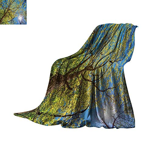 (Custom homelife Lightweight Blanket Forest Home Decor,Tree Branches Pastoral Lumber Wide Flourishing Natural Beauty Eco Backed,Green Blue Lightweight E x tra Big Bed or Couch 50