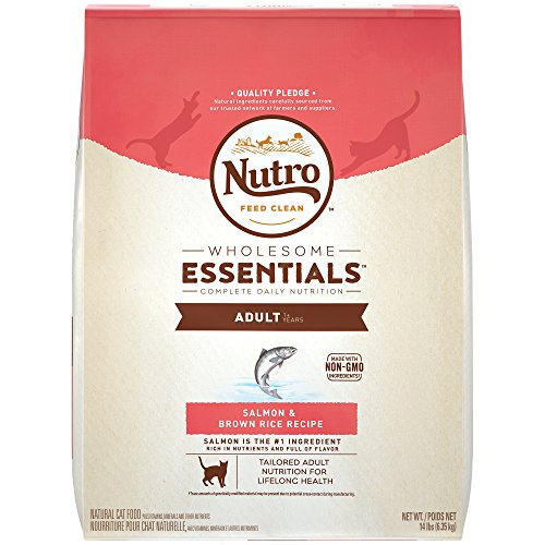 natural choice kitten food - 7