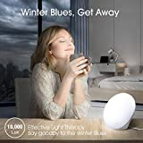 Miroco Light Therapy Lamp, UV-Free 10000 Lux LED