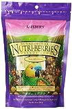 Image of Lafeber's Gourmet Sunny Orchard Nutri-Berries for Parrots 10 oz bag