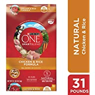 Purina ONE Natural Dry Dog Food; SmartBlend Chicken & Rice Formula - 31.1 lb. Bag