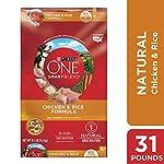 Purina-ONE-Natural-Dry-Dog-Food-SmartBlend-Chicken-Rice-Formula-311-lb-Bag
