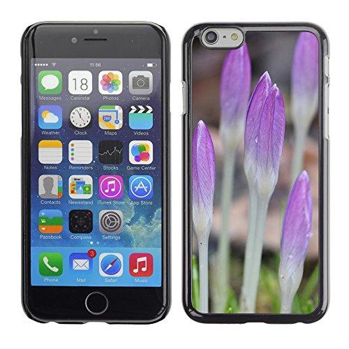 """Premio Sottile Slim Cassa Custodia Case Cover Shell // F00025468 Fleurs pousses // Apple iPhone 6 6S 6G PLUS 5.5"""""""